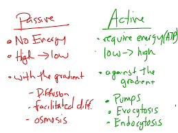 act-vs-pass-notes